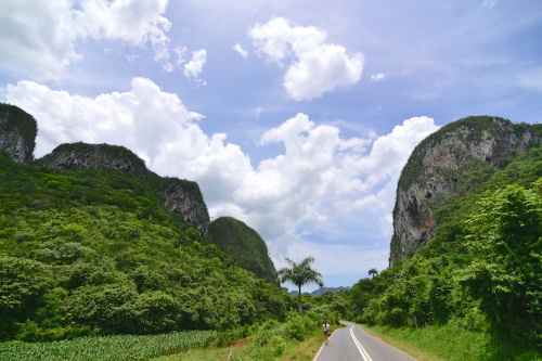 TOUR IN VIÑALES