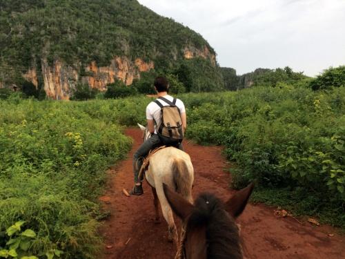 HORSE TRAIL PALMARITO