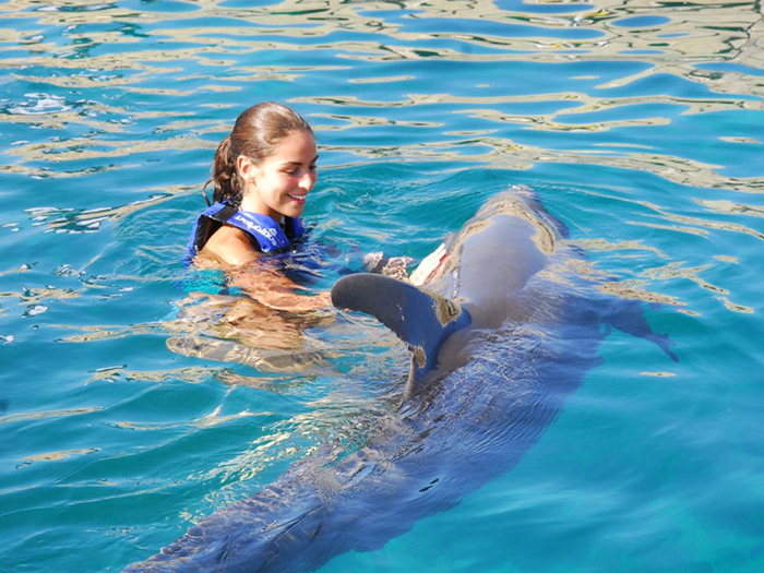 VISIT TO THE DOLPHINARY + SWIMMING WITH DOLPHINS